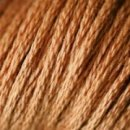 0301 Squirrel brown