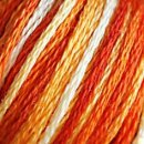 0051 Variegated Burnt Orange