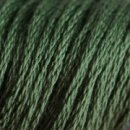 0520 Dark fern green